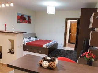 CENTRAL & MODERN STUDIO D - COMFY - WiFi - PARKING - Bucharest vacation rentals