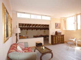 Prestige House Luxury Penthouse WIFI - Florence vacation rentals