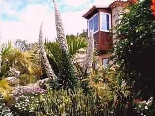 """Apartamento """"Mar y Teide"""" - El Sauzal vacation rentals"""