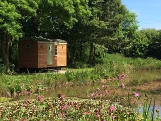 Nice Shepherds hut with Parking and Parking Space - Kingston-upon-Hull vacation rentals