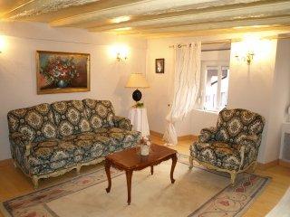 Appartement de charme Hortensia à Thann en Alsace - Thann vacation rentals