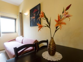 Comfort 1 BDR  Apt. near the sea, Ben Yehuda st.68 - Tel Aviv vacation rentals