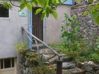 Gîte voor 2-4 personen met eigen kookgelegenheid - Saint-Gervais-d Auvergne vacation rentals