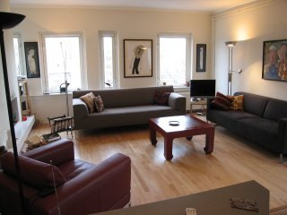 Beautiful, Spacious, Sunny apt in Ctr (with lift) - Amsterdam vacation rentals