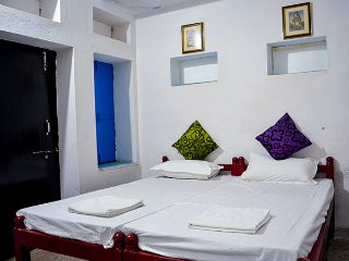 Nice Condo with Internet Access and A/C - Udaipur vacation rentals