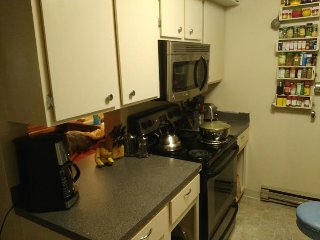 Private Room, Minutes to Old Town & CSU - Fort Collins vacation rentals