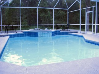 The Villa on the Lakes - Orlando vacation rentals