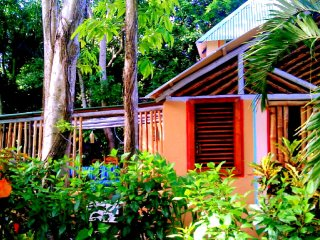 JUNGLE DREAM!   La Casa de La Canela - Imbert vacation rentals