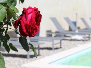 La Bohème gite de charme avec piscine Elvire - Nyons vacation rentals