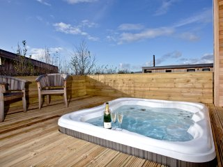 Willow Lodge, South Downs located in Hassocks, West Sussex - Hassocks vacation rentals