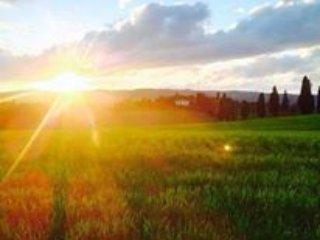 Splendida villa immersa nella campagna Toscana - Lucignano vacation rentals