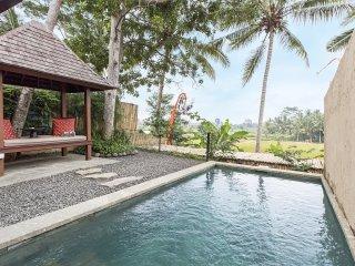 Temuku Ubud Villas - Ubud vacation rentals