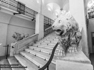 LE CASE DELLA STE - SANTA CATERINA 1 - Genoa vacation rentals