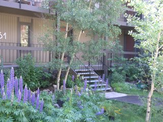 On the Mountain-2bd/2ba- Beautiful yet reasonable - Breckenridge vacation rentals