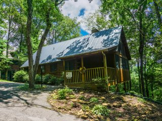 1 bedroom Cabin with A/C in Sevierville - Sevierville vacation rentals