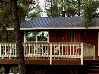 Cozy, family-friendly cabin - Pagosa Springs vacation rentals