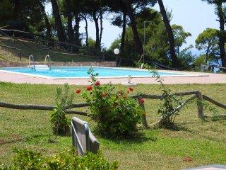 Wonderful 3 bedroom House in Possidi - Possidi vacation rentals