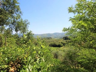 """""""Sweet Charlotte"""" two bedrooms and private terrace - Panzano vacation rentals"""