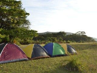 Wonderful 5 bedroom Farmhouse Barn in Sagara - Sagara vacation rentals