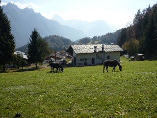 Orizzonti  Montani - WEST apartment - Pieve di Cadore vacation rentals