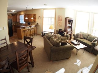 Nice Condo with Internet Access and Garage - Sun Peaks vacation rentals