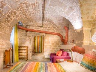 Studio Colbert, amazing 17th century wine cellar - Paris vacation rentals