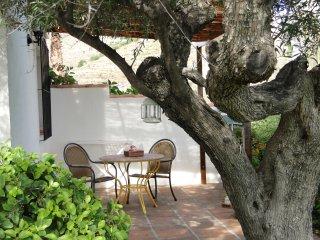 Finc Montañas y Mar / Casa Lavanda - La Herradura vacation rentals