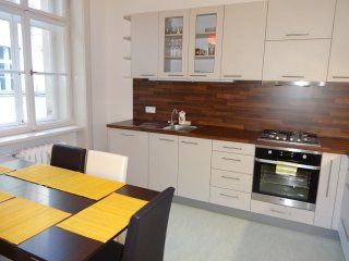 Large apart. 2 BDRM center Prague Discount 10 pers - Prague vacation rentals