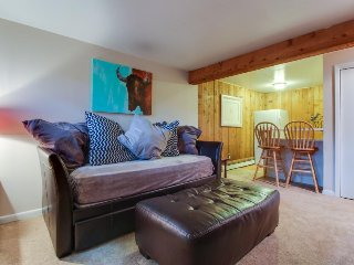 Cozy mountain condo in West Vail perfect for couples or small families! - West Vail vacation rentals