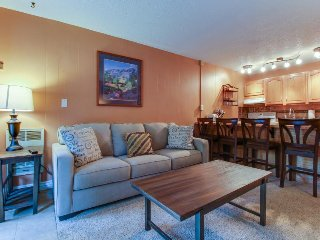 Comfy riverfront condo w/ shared pool & sauna - walk to ski lifts! - Keystone vacation rentals