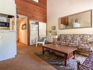Cute condo with a balcony, easy lake access, and a shared pool, hot tub & sauna! - Tahoe Vista vacation rentals