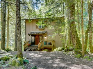 Dog-friendly cottage w/ shared pool & entertainment, walk to the river - Rhododendron vacation rentals