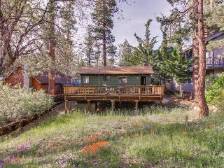 Dog-friendly, adorable mountain home with yard, great location - Big Bear Lake vacation rentals