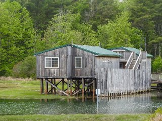 Charming cottage right on the waterfront on Drake's Island - Wells vacation rentals