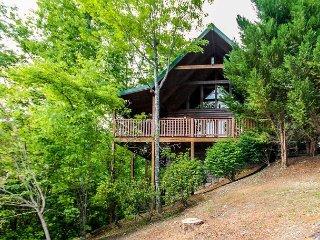 Whisper Mountain  Hot Tub Privacy Mountain View Pets WiFi  Free Nights - Gatlinburg vacation rentals