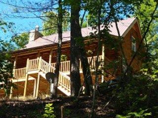 Sandpiper Too: Lake Lure Log Cabin Rental - 4BR - Lake Lure vacation rentals