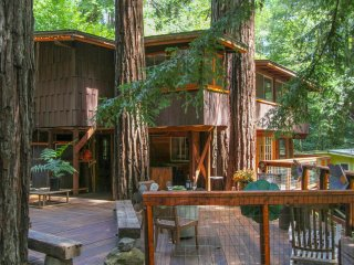 Relaxing getaway in a Tree House - Guerneville vacation rentals