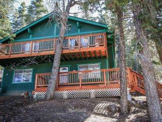 Wonderful 2 bedroom House in Big Bear Lake - Big Bear Lake vacation rentals