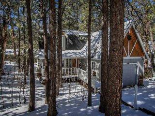 1209-Prime Pines - Big Bear Lake vacation rentals