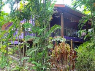 Botanical Garden Cottage at Finca Los Monos - Bocas Town vacation rentals