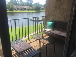 Gorgeous Condo with Internet Access and A/C - Conroe vacation rentals
