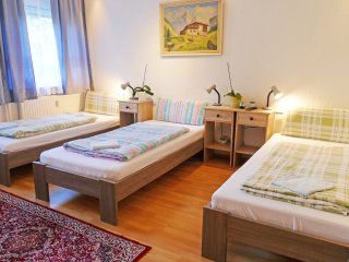 Apartment/Ferienwohnung/1 St. Zim.1 - Cologne vacation rentals
