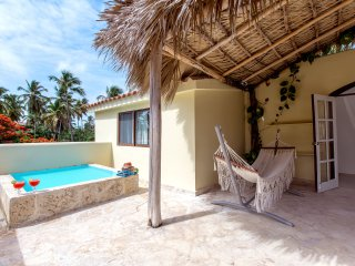 Beach House 11guests Jacuzzi - Bavaro vacation rentals