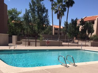 Beautiful 2 bedroom Condo! Walk to Cubs Stadium! - Mesa vacation rentals