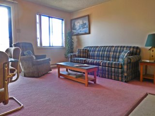 Great View. Great Location. Great Rates. - Snowshoe vacation rentals