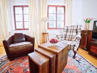 (2) first class apartment - Salzburg vacation rentals