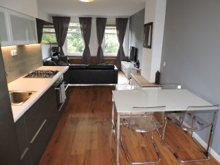 Comfortable Apartment in Amsterdam - Amsterdam vacation rentals