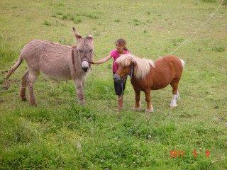 Gîte dans Mas, idéal enfant avec âne et poney - Saint-Bres vacation rentals