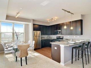 Furnished 2-Bedroom Apartment at Oak Leaf Ln & Honeylocust Ln Vernon Hills - Vernon Hills vacation rentals