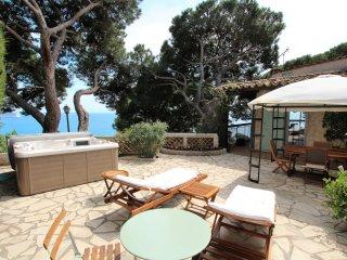 PEACEFUL VILLA - Cannes vacation rentals